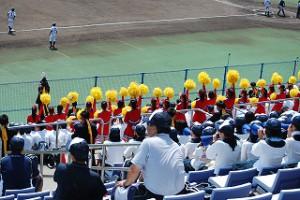 愛媛県夏の高校野球