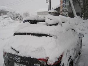 親子のスノーボードの旅(ゲレンデ編)