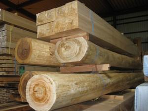 新築住宅の木材検討