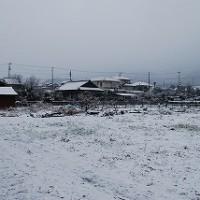 雪で真っ白な風景