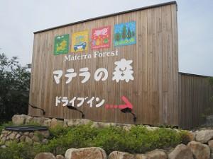 マテラの森