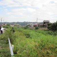 渦井川の清掃