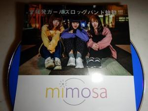 mimosa:ミモザ
