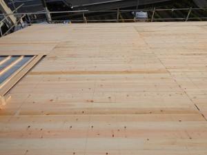 平屋建て新築住宅:片流金属板屋根