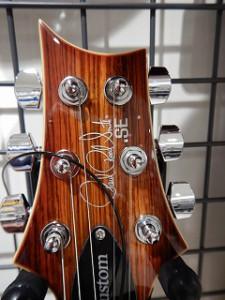 ゼブラ・ギター